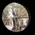 Beelitz Heilstätten Gestern-in-Brandenburg-de13